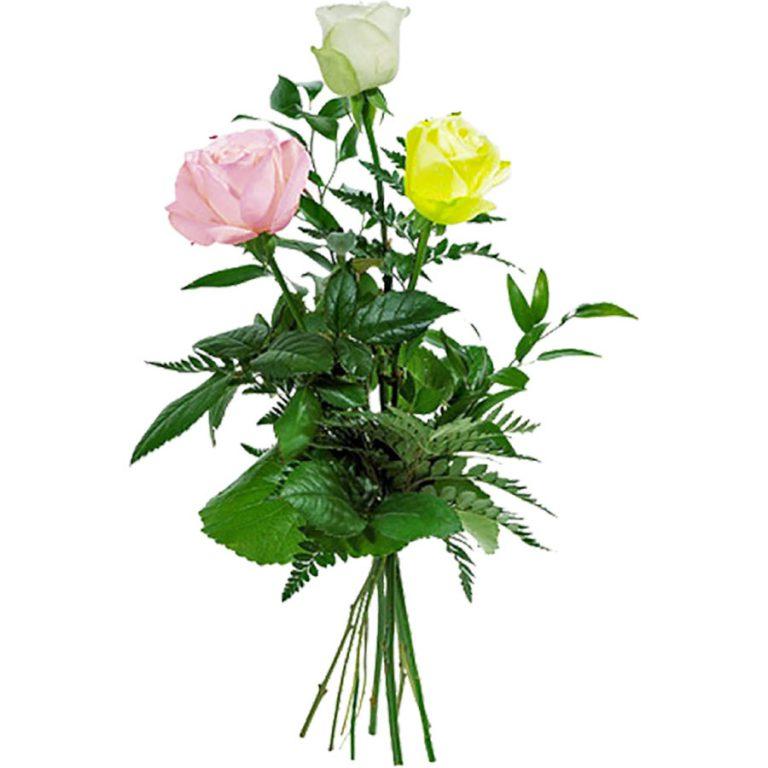 Три розы букет фото
